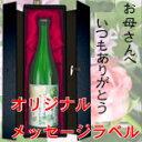 【母の日】オンリーワンの名入れ・メッセージ入れラベル★限定コラーゲン梅酒720ml