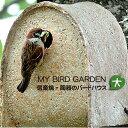 ╞л┤яд╬е╨б╝е╔е╧еже╣ ┬чMY BIRD GARDEN┐о│┌╛╞ ╠ю─╗ ┤╤╗б ╠■д╖е░е├е║