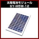 ソーラーパネル 【M-07392】 17V 5W SY-M5W-12 太陽電池モジュール 17V/5W 太陽 発電 自作 キット