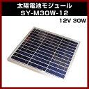 ソーラーパネル 【M-07394】 12V 30W SY-M30W-12 太陽電池モジュール 太陽 発電 自作 キット