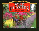 【DM便対応】花の種(ワイルドフラワー)ガーデニング/フラワー/おうちで簡単