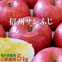 当店おすすめおいしい〜!信州サンふじりんご5kg!産地直送上品サンふじりんご