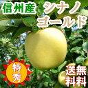 信州産りんご10キロ【シナノゴールド】特選特秀品 美味しい産地から直送!