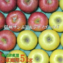 信州りんご【サンふじ&シナノゴールド】訳ありご家庭用5kg地元店直送りんご!