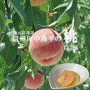 2021年予約受付 桃川中島平の桃【白鳳】朝摘み出荷3kg