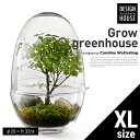 【Design House Stockholm デザインハウスストックホルム】Grow GREENHOUSE clear XLグロウ グリーンハウス クリア ガラス L 鉢 植木鉢 北欧 Vase 花瓶【コンビニ受取対応商品】【RCP】