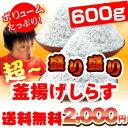 【送料無料】超盛り盛り釜揚げしらす600g!【smtb-k】...