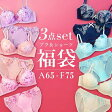 ad01☆【送料無料】 豪華お得福袋☆ブラジャー&ショーツ3点セット