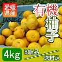 "【B級品送料込】愛媛産の""有機生柚子""[4kg入]JAS認定完全無農薬"