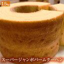 【期間限定4500円→1999円さらにクーポンで50円OFF】スーパージャンボクーヘン5種の味