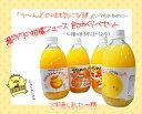 楽天資材屋さん 楽天市場店瀬戸内の柑橘ジュース 飲み比べセット 4種全て飲めるお得なセット♪(温州みかん、清見、デコタンゴール、甘夏みかん 各3本)【飲み比べてね♪】