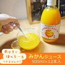 【ホットもおすすめ♪】【お歳暮熨斗対応中!】みかんジュース 500ml×12本入 [果汁100% ス
