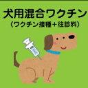 犬用6種混合ワクチンがおうちで受けられる!往診診療がセットになったお得で便利な「往診6種混合ワクチン