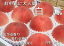 【2019年ご予約完売】もも 減農薬 和歌山県 産地直送 あら川の桃 白鳳(家庭用)4〜6Lサイズ 約4kg(約13〜15玉)【発送:7月中旬頃〜7月下旬頃】