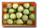 産地直送 洋梨 エコファーマーの低農薬、有機肥料 平棚・無袋栽培 山形蔵王のラフランス 5L~6Lサイズミックス 約3.5kg 【発送時期:11月中旬頃~12月中旬頃】