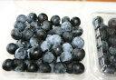 農薬不使用 奈良県 西吉野のブルーベリー・ラビットアイ 約1kg 完熟の甘さを届けます【発送時期:7月下旬頃~8月上旬頃】