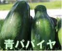 【送料無料】沖縄野菜・青パパイヤ2kg(3〜6個)【発送年中...