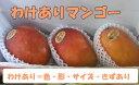 【送料無料】いっぱい食べたい方へ!沖縄産わけありマンゴー 5kg(12〜16個)【発送期間 7月上旬〜8月末頃】05P05July14
