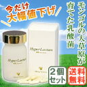 [all products point up to 11 times May 21 9:59 マデ] hyper lactam (12 g of 200 mg of *60 (capsule)) [two sets] [Village Nouveau]