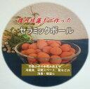 割引セール!「金スマ」、日本TV「世界一受けたい授業」で、稚内珪藻土の優れた空気浄化、調湿作用を紹介!半永久調湿稚内珪藻岩【調湿…