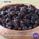 チリ産 ジャンボレーズン 250g フレーム種 送料無料 ドライフルーツ 保存に便利なチャック付き  保存食 非常食 訳あり
