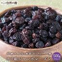 チリ産 ジャンボレーズン 500g(250g×2) フレーム種 送料無料 ドライフルーツ 保存に便利なチャック付き  保存食 非常食 訳あり