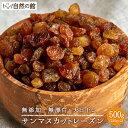 サンマスカットレーズン 無添加 500g(250g×2) 有機栽培使用 ノンオイル ドライフルーツ 送料無料 保存に便利なチャック付き  保存食 非常食 訳あり