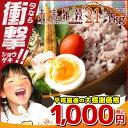 未来雑穀21+マンナン 1kg(500g×2) 完全 国産 ...