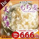 もち麦 1kg (500g×2) 館のもち麦 アメリカ産 ダイエット 送料無料 38%OFF 【予約商品