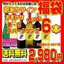 【送料無料】訳ありおまかせ いろいろ ワイン福袋 赤ワイン 白ワイン スパークリングワイン 計6本 アウトレット