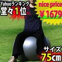 バランスボール 75cm玉  【RCP】