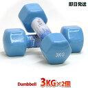 ダンベル 3kg 2個 レディース用 ブルー二の腕 上腕をス...