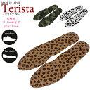 Terista-1