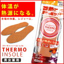 Thermo-ins-1
