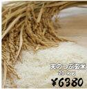 福島県産天のつぶ玄米20キロ(玄米・30年産)20kg 送料...