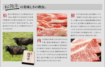 松阪牛小間切れ肉