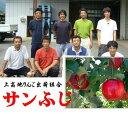 長野県上高地りんご出荷組合 きめこまかな肉質と濃厚な甘み ゆたかな香り 「サンふじ」1箱10kg(28〜36玉)