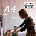 シルクスクリーンプリントA4サイズ(1色刷)30-49枚