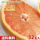 【送料無料】グレープフルーツ「王冠」ゴールデンクラウン 32玉