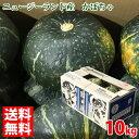 【送料無料】ニュージーランド産 かぼちゃ 10kg