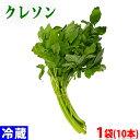 愛知県産 クレソン 秀品 1袋(10本入り)