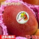 【送料無料】メキシカンマンゴー(アップルマンゴー)14玉入り 1箱