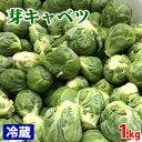 【送料無料】オーストラリア産 芽キャベツ 1kg(1箱)