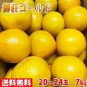 【送料無料】愛媛県産 御荘ゴールド(みしょうごーるど)20〜24玉入 10kg