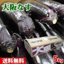 【送料無料】大阪府産 大阪なす 秀品・M-Lサイズ 5kg(約40-50本入り)