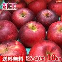 【送料無料】長野県(または青森県)産 紅玉 秀品 46〜50玉 10kg(箱)