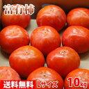 【送料無料】奈良県産 富有柿 秀品・L(約42玉入り)10kg箱...