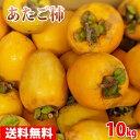 【送料無料】愛媛県産 あたご柿 大サイズ 10kg箱