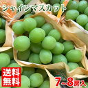 【送料無料】長野県産 シャインマスカット 7~8房入り 5kg