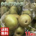【送料無料】佐賀県産 キウイフルーツ 4〜5玉入×15袋(箱)
